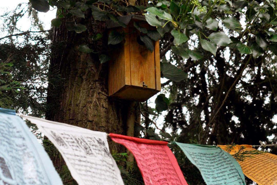 Sang-Smoke-Cleaning-Ritual - Tibetische Flaggen